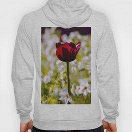 Black Tulip in Art Hoody