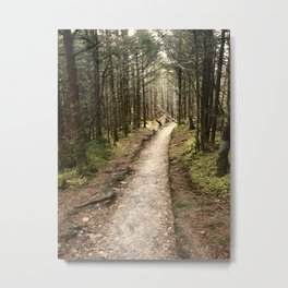 Trails of Tennessee Metal Print