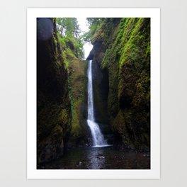 Lower Oneonta Falls, Oneonta Gorge, Oregon Art Print