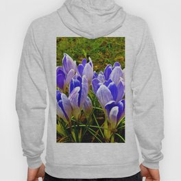 Blue Purple Crocuses Hoody