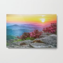 Photos USA Roan Mountain Rhododendron Gardens Nature Hill Scenery Sunrises and sunsets Shrubs sunrise and sunset landscape photography Bush Metal Print