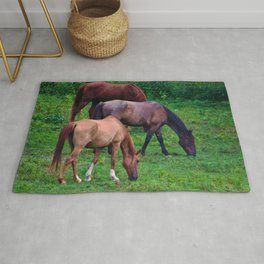 Grazing Horses Rug