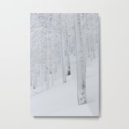 Snow covered forest winter wonderland Metal Print