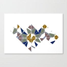 Tano Symmetry  Canvas Print