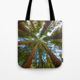 Redwood Forest Canopy Tote Bag