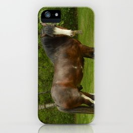Clyde the Clydesdale iPhone Case