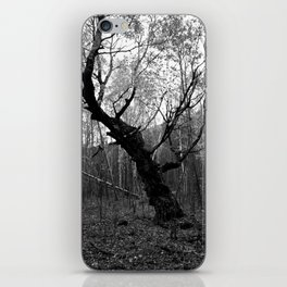 Sleepy Hollow iPhone Skin