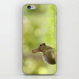 The Happy Rabbit iPhone Skin