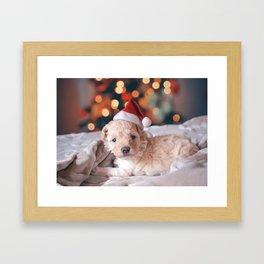 Santa Dog (Color) Framed Art Print
