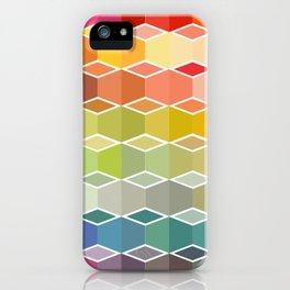 flaneur iPhone Case