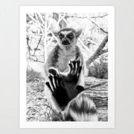 Lemur. Cool. Art Print