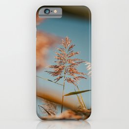 Pond Flower and Blue Sky iPhone Case