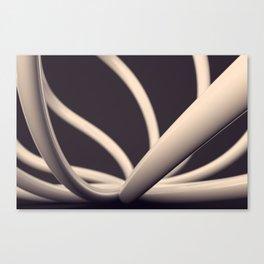 XY2 Canvas Print