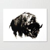 buffalo Canvas Prints featuring Buffalo by Maddi Matthews