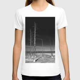 Lodgepole Pines T-shirt