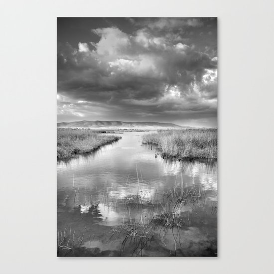 Before the big storm Canvas Print