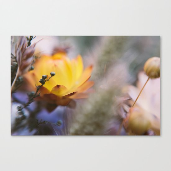 Contrary Canvas Print