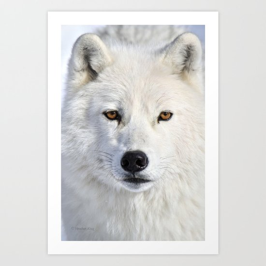 Up close and personal Art Print