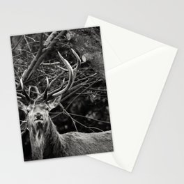 The Male Stationery Cards
