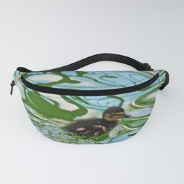 Mallard duckling swimming Fanny Pack