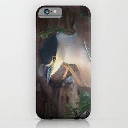 Friendly Bird iPhone Case