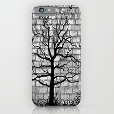 Graffiti Tree B/W iPhone 6s Slim Case