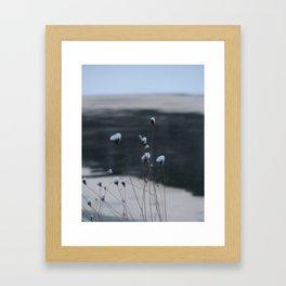 Snow-Covered Buds Framed Art Print