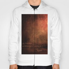 IS THERE A PERFECT WORLD? Hoody
