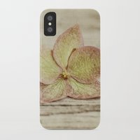 hydrangea iPhone & iPod Cases featuring hydrangea by Bonnie Jakobsen-Martin
