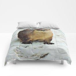 Snow otter Comforters