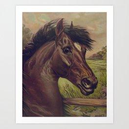 Vintage Horse Illustration (1893) Art Print