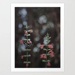 Back To Nature Art Print