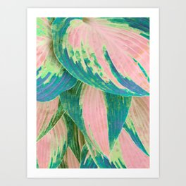 Hosta Multicolor Art Print