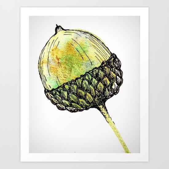 acorn Art Print
