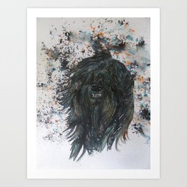 Harker The Tibetan Terrier Art Print