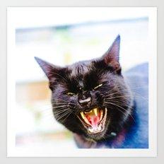 Angry black cat Art Print