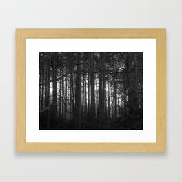 The magic of the woods Framed Art Print