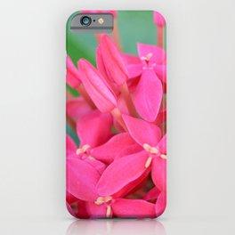 Pink Petals CR iPhone Case