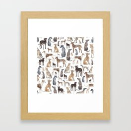 Greyhounds and Whippets Framed Art Print