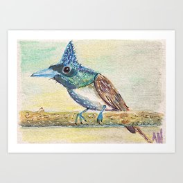 Bird in Watercolor Pencil Art Print