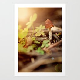 """I am...a mushroom on whom the dew of heaven drops now and then"" --John Ford Art Print"