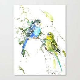 Parakeets, budgies pet bird home decor Canvas Print