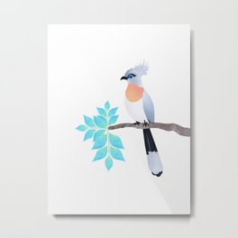 Crested Coua Metal Print