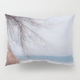 Cold Days Pillow Sham