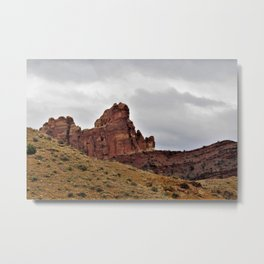 Desert Aerie Metal Print