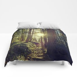 Hidden trail Comforters
