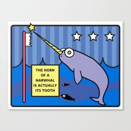 Facts You Should Know: Narwhal Canvas Print