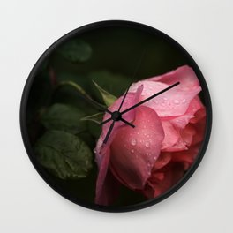Pink rose. Raindrops on petals. Wall Clock