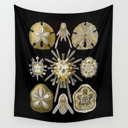 Ernst Haeckel Echinidea Sea Urchin Wall Tapestry