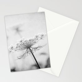 AFE Queen Anne's Lace BW Stationery Cards